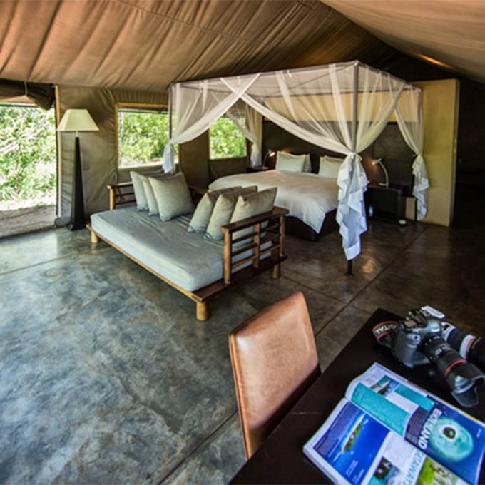View Honeyguide Tented Camp in Manyeleti Game Reserve