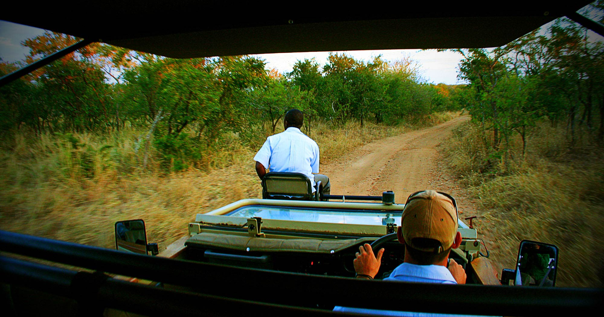 Manyeleti Private Game Reserve safari