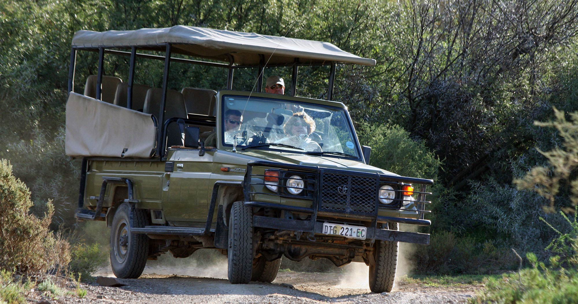Manyeleti South Africa safari - Safari information for your